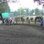 20110925134929.jpg